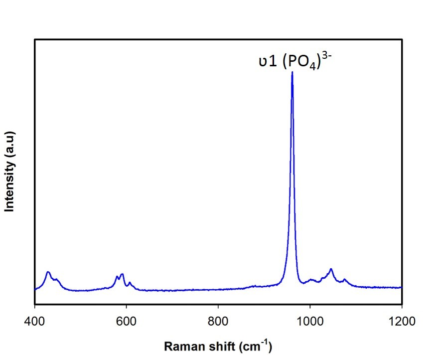 Raman spectrum of Hydroxyapatite nanoparticles.