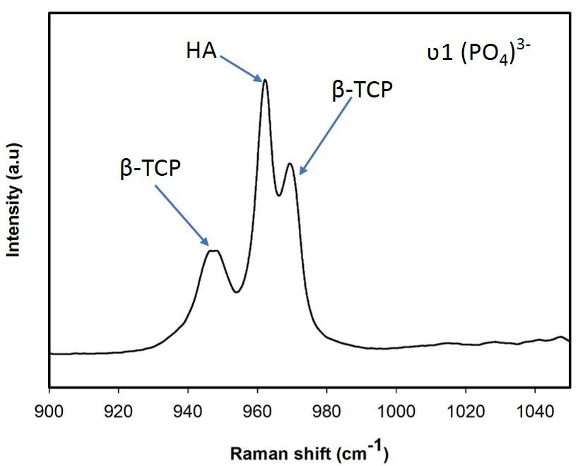 Raman spectrum of BCP nanoparticles.