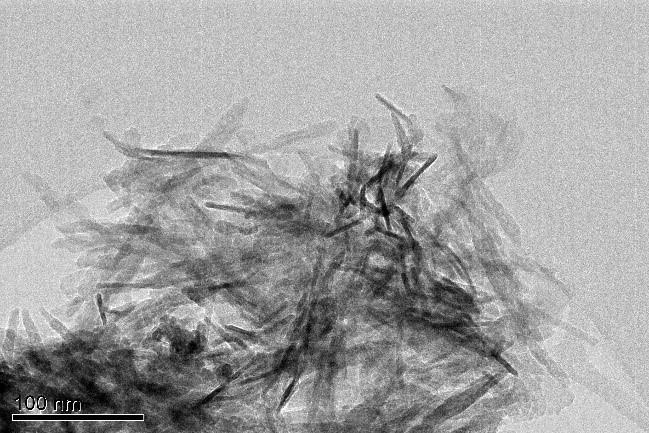Bright-field TEM micrograph of HA nanoparticles.