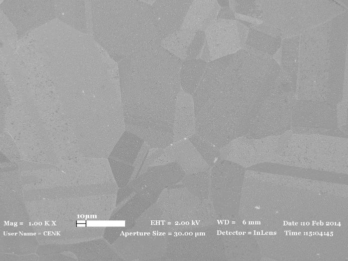 SEM image of graphene film on copper