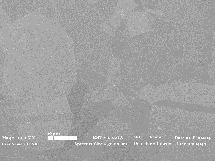 SEM image of graphene film on copper